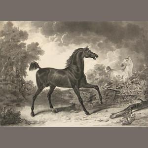 vernet carle 4 works cheval allant au man ge cheval. Black Bedroom Furniture Sets. Home Design Ideas