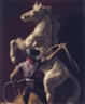 David Levinthal, COWBOY WITH LASSO AND WHITE HORSE
