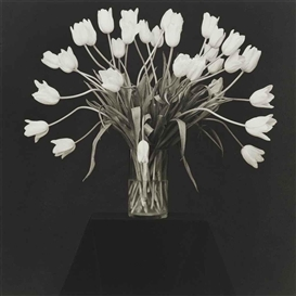 Artwork by Robert Mapplethorpe, Vase with White Tulips, 1988, Made of platinum print