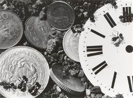 Artwork by David Wojnarowicz, Untitled (Clock/Coins), from The Ant Series, Made of Gelatin silver print
