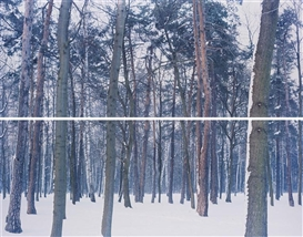 Artwork by Ori Gersht, Winter 2 from Liquidation, Made of Colour coupler diptych