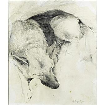 Untitled (German Shepherd) By Andrew Wyeth