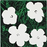 Elaine Sturtevant, Flower (After Warhol)