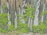 Alfred Joseph Casson, Forest Edge