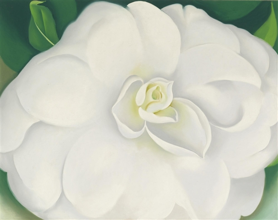 Okeeffe georgia art auction results a white camellia georgia okeeffe mightylinksfo