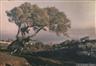 Auguste Lumière, Louis Lumière, LA CIOTAT