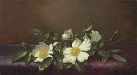 Artwork by Martin Johnson Heade, Cherokee Roses on a Purple Cloth, Made of oil on canvas