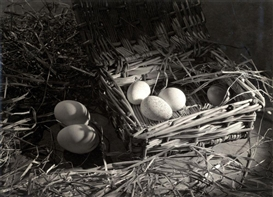 Emmanuel Sougez, The eggs in the straw