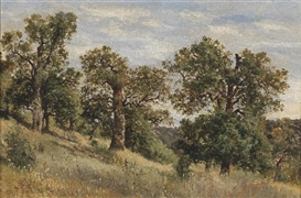 Artwork by Theodor von Hörmann, Hillside with Trees, Made of Oil on canvas