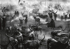 Artwork by Sebastião Salgado, South Sudan, Made of Oversized silver print