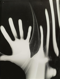 Artwork by György Kepes, HAND, Made of photograph