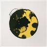 Kees de Goede, Yellow black circles