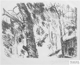 Artwork by Lovis Corinth, Beech woods, Made of Lithograph