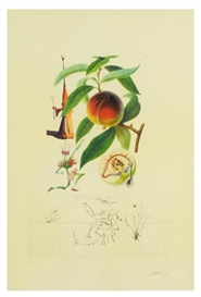 "Salvador Dalí, ""Pecher Penitent (Penitent Peach Tree)"" of ""FlorDali / Les Fruits"""