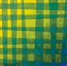 Peter Schuyff, Yellow and green plaid