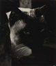Carlotta Corpron, Untitled (Cat)