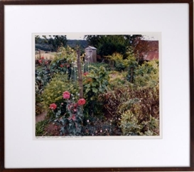 Artwork by Frank Gohlke, Poppies, Beans, Onions and Grapes, Made of Color photograph