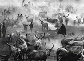 Artwork by Sebastião Salgado, South Sudan, Made of Silver print