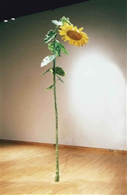 Artwork by Keith Edmier, Sunflower, Made of acrylic and polymere