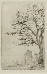 Artwork by James Ensor, L'Acacia, Made of Etching on Simili Japan paper