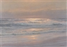 Carl Kenzler, Waves breaking on a beach at sunrise, sea birds nearby