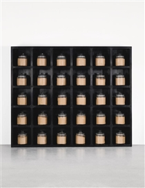 Artwork by Ai Weiwei, Dust To Dust, Made of Thirty glass jars with powder from grinded Neolithic pottery on wood shelves