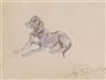 Anton Romako, A study of a dog