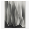 Arthur Siegel, Untitled photogram