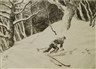 Yngve Edward Soderberg, Skier Through The Woods