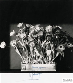 Artwork by Robert Mapplethorpe, Tulips, Made of Offset lithograph