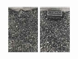 Artwork by Sophie Calle, Father Mother (The Graves, #25), Made of gelatin silver prints