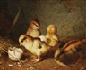 Gustav Konrad Sus, FOUR CHICKS