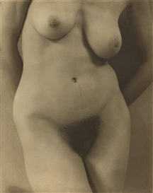 Artwork by Alfred Stieglitz, GEORGIA O'KEEFFE: A PORTRAIT-TORSO, Made of palladium print