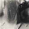 Francesca Woodman, Self Portrait