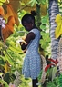 Ruud van Empel, World #4