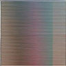Carlos Cruz-Diez, Physichromie no. 1.174