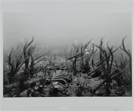 Artwork by Hiroshi Sugimoto, Ordovician Period, , Made of Gelatin silver print