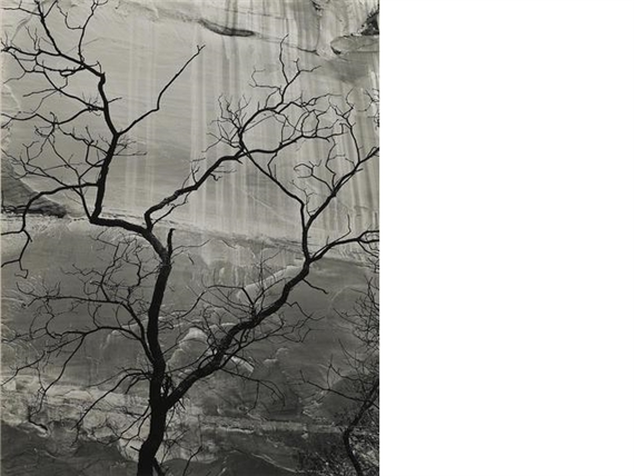 weston brett glen canyon 1959 mutualart