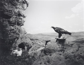 Artwork by Hiroshi Sugimoto, Golden Eagle, Made of gelatin silver print