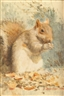 Deborah Deichler, AUTUMN SQUIRREL