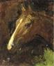 Abbott Handerson Thayer, Study of a horse