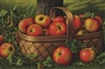 Levi Prentice, Apples in a Basket