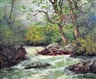 Segundo Huertas Aguiar, stream in a forest landscape