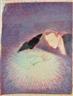Gottfried Helnwein, Bewunderung