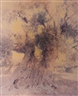 Ori Gersht, Ghost-Olive No. 1