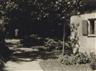 Josef Breitenbach, Summer garden, munich