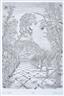István Orosz, Darwin's Garden