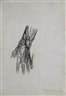 Pavel Tchelitchew, Study of a Hand