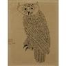 Ben Shahn, Owl