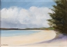 Anne Packard, North End of Long Boat Key